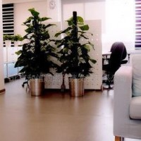 PVC地板 塑胶地板 学校专用